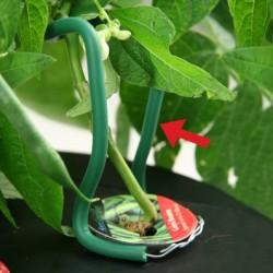 Soportes para plantas Easy Up